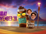 Jessie's Aloha-holidays with Parker and Joey