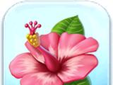 Hibiscus Flower Token