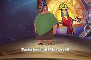 Clu-pacha-11