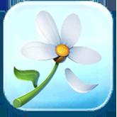 Flower Token
