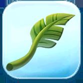 Palm Fan Token
