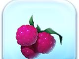 Raspberries Token