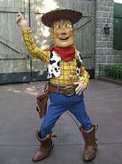 WoodyInfoBox