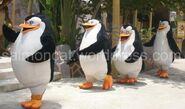 Penguins-of-madagascar-universal-studios-singapore