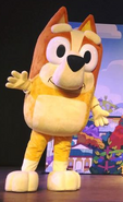 Bingo Heeler Costume