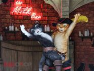 Puss-kitty-softpaws-600x454