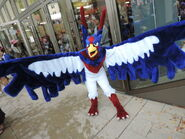 Subame the swellow by senria chan-d9abt44