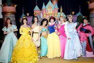 Disney-Princess-Court