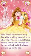 Petit's Story