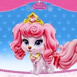 Palace Pets - Macaron.png
