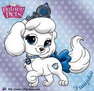 Pumpkin-Princess-Palace-Pet-SKGaleana-image-copy