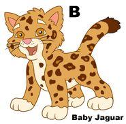 Baby Jagaur