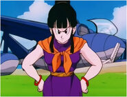 Chi Chi are looking for Gohan