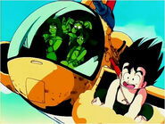 Goku and his friends