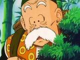 Grandpa Son Gohan