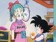 Bulma and Goku dragon balls