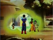 Chi-Chi and Videl catfight