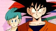 DragonballZ-Episode002ws 293