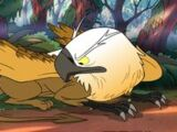 Griffin (Gravity Falls)