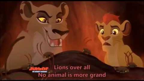 Lions Over All
