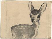 Bambi Concept 1.jpg