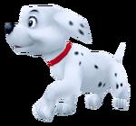 Puppy KH