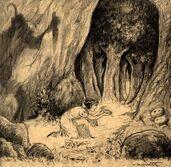 Snow White Boceto 25