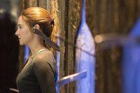 Divergent02 officialnomark
