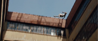 Tris falling