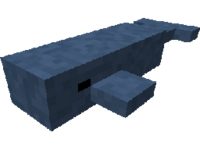 Whale Model.png