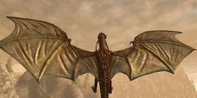 D2 Существа Драконы 1