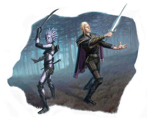 Swordmages by Eric Deschamps.jpg