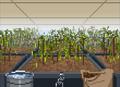 GardenersEndingB