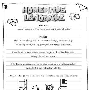 Homemade Lemonade Guide.jpg