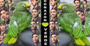 Corazón verde canción de José Rafael Cordero