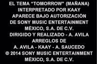 Canción Final Annie 2014