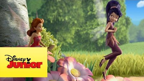 Disney Hadas - Con Todas las Chicas