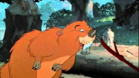 El castor - La dama y el vagabundo