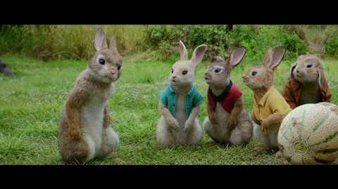 LAS TRAVESURAS DE PETER RABBIT - TV SPOT