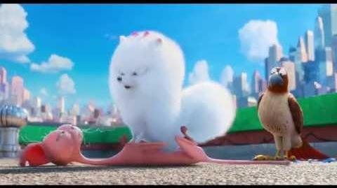 La Vida Secreta de tus Mascotas - Clip Gidget interroga a Ozone
