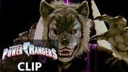 Power Rangers en Español El Ranger hombre-lobo