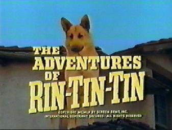 Las aventuras de Rin Tin Tin