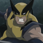 HVS-Wolverine