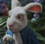 RabbitAIW10