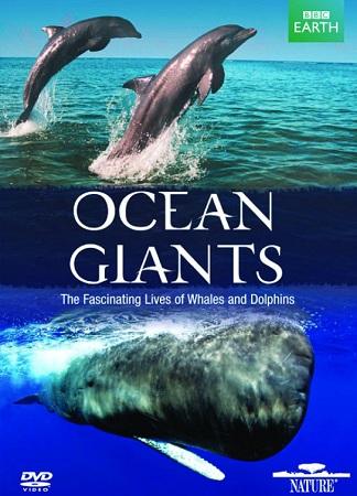 Gigantes del océano