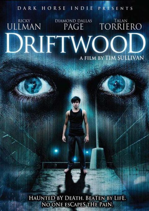 Driftwood: el secreto
