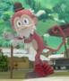 Mono Anciano