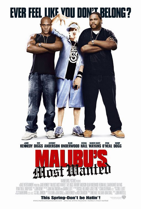 Los más buscados de Malibú