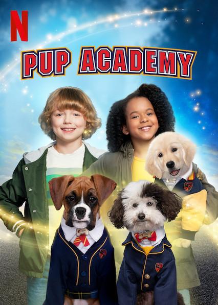 Academia de cachorros