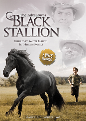Las aventuras del corcel negro